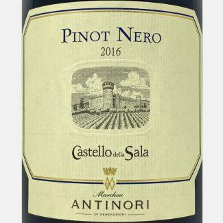 Brunello di Montalcino Vigneti del Versante DOCG 2010 – Pian dell'Orino-Vinigrandi