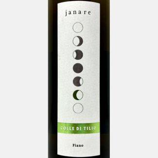Grüner Veltiner VOM HAUS 2019 – Pfaffl