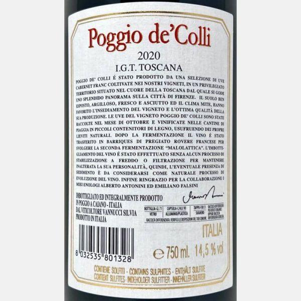 Barolo Bricco Boschis DOCG 2013 Bio Magnum 1.5L – Cavallotto-Vinigrandi