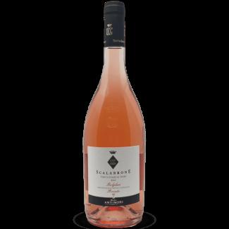 Pinot Grigio Alto Adige DOC 2019 Bio – Alois Lageder