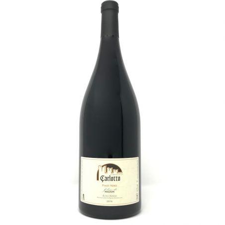 Nebbiolo d' Alba 2015 – Bruno Giacosa